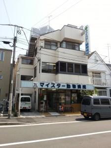 minamisakikaho-Haru-4