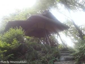 minamisakikaho-tokyo-4