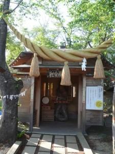 minamisakikaho-yamanashi-23