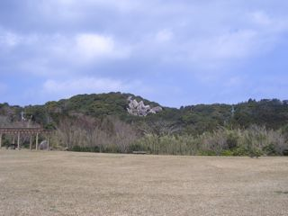 kochi-4.jpg
